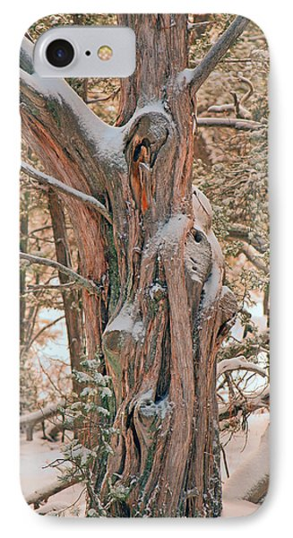 IPhone Case featuring the photograph Snowy Dead Tree by Donna Greene