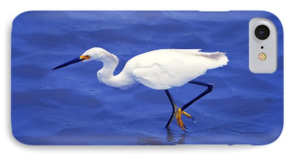 IPhone Case featuring the photograph Snowy Egret 1 by Bill Holkham