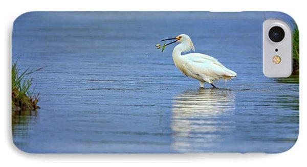 Snowy Egret At Dinner IPhone 7 Case by Rick Berk