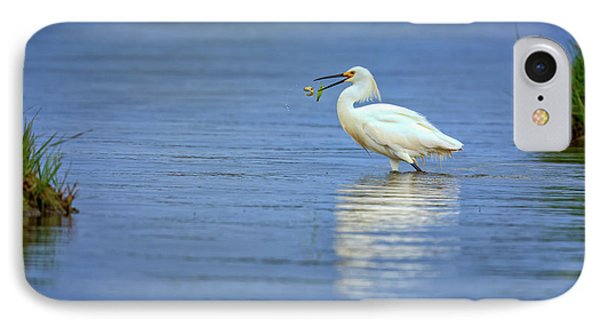 Snowy Egret At Dinner IPhone Case by Rick Berk