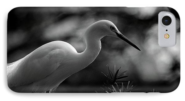 IPhone Case featuring the photograph Snowy Egret Bw by Travis Burgess
