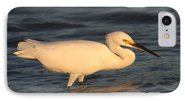 Snowy Egret By Sunset IPhone Case by Christiane Schulze Art And Photography