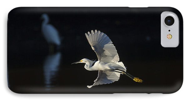 Snowy Egret In Flight In The Morning Light IPhone Case