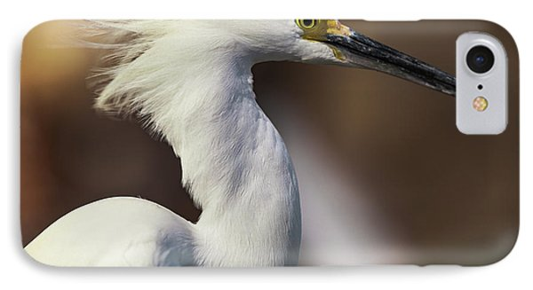 Snowy Egret IPhone Case by Jason Moynihan