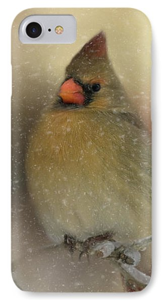 Snowy Female Cardinal IPhone Case by Lana Trussell
