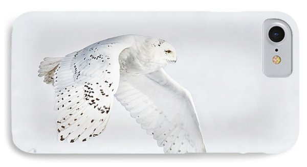 Snowy Flight IPhone Case by CR  Courson