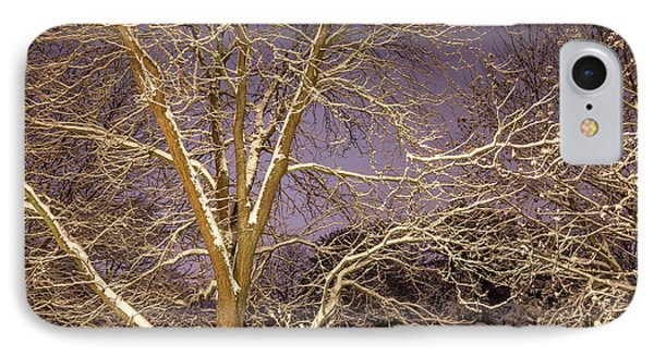 Snowy Night IPhone Case by Todd Reese