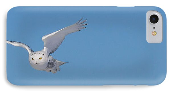 IPhone Case featuring the photograph Snowy Owl - Dive by Dan Traun