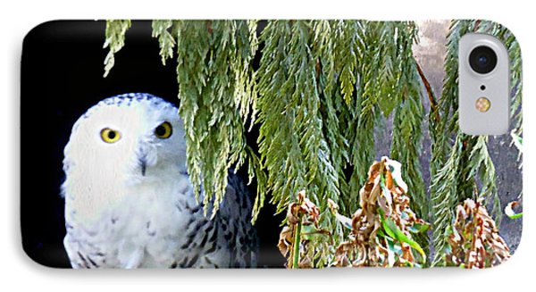 IPhone Case featuring the photograph Snowy Owl by Janice Spivey