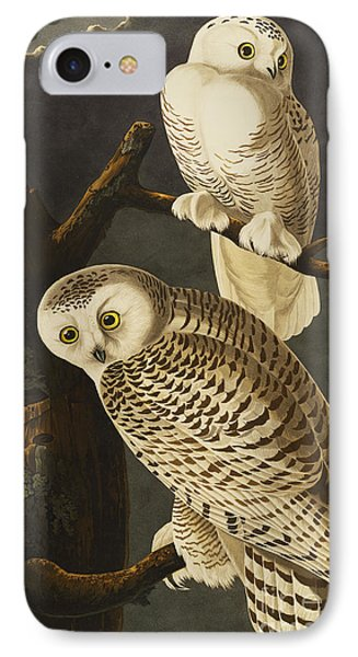 Snowy Owl IPhone Case by John James Audubon