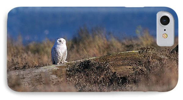 IPhone Case featuring the photograph Snowy Owl On Log by Sharon Talson