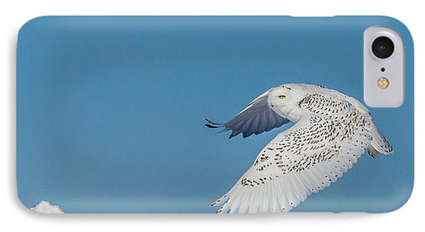 IPhone Case featuring the photograph Snowy Owl - Taking Flighty by Dan Traun