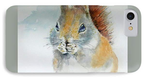 Snowy Red Squirrel IPhone Case by William Reed