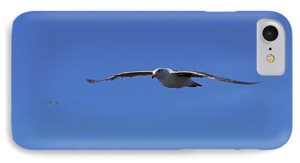 Soar Like A Seagull IPhone Case by Ernie Echols
