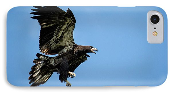 Soaring IPhone Case by Eleanor Abramson