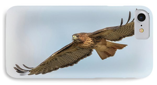 IPhone Case featuring the photograph Soaring Hawk 2 by Angie Vogel