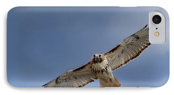 Soaring Red Tail Square Phone Case by Bill Wakeley