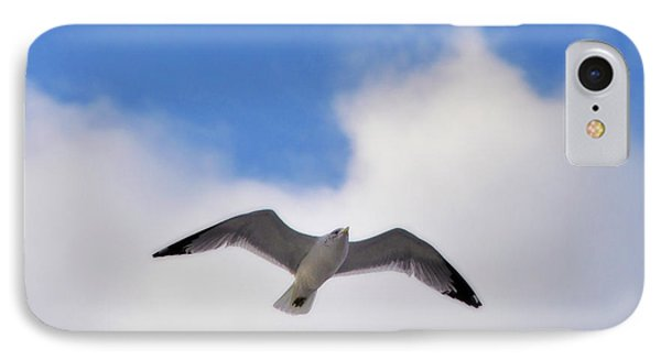 Soaring Seagull IPhone Case by Bill Cannon