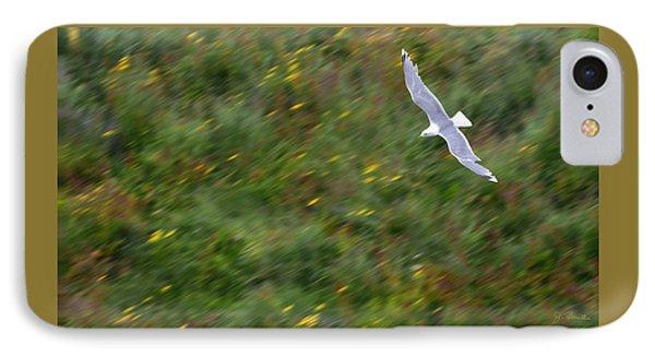 IPhone Case featuring the photograph Soaring Seagull by Joe Bonita