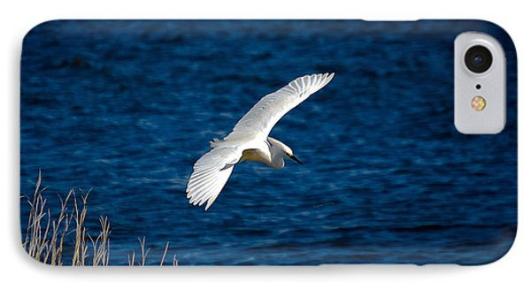 Soaring Snowy Egret  IPhone Case by DigiArt Diaries by Vicky B Fuller