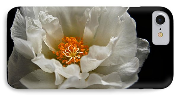 IPhone Case featuring the photograph Soft And Pure by Judy Vincent