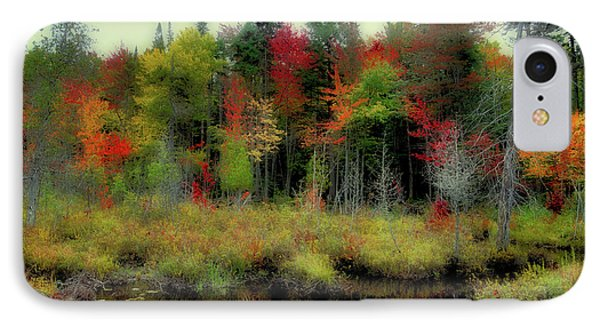 IPhone Case featuring the photograph Soft Autumn Color by David Patterson