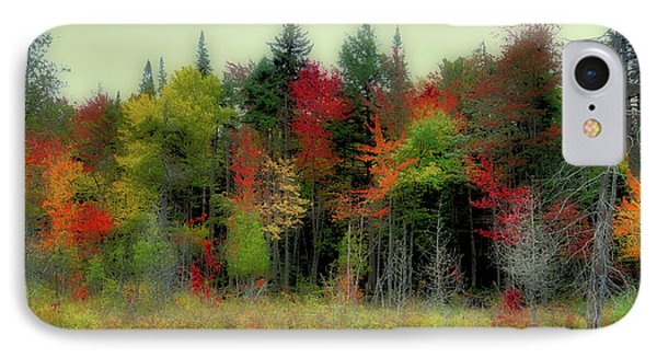 IPhone Case featuring the photograph Soft Autumn Panorama by David Patterson