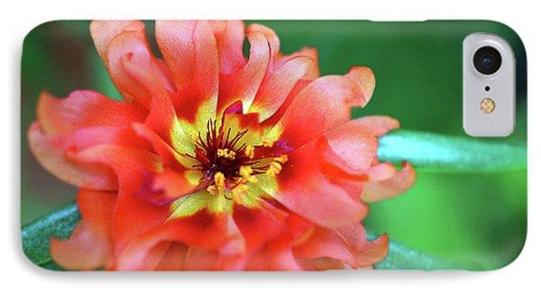 Soft Peach Ruffled Petals IPhone Case by Sue Melvin