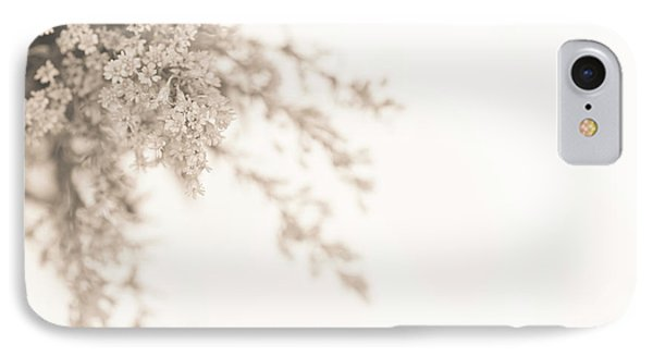 Soft Solidago IPhone Case by Anne Gilbert