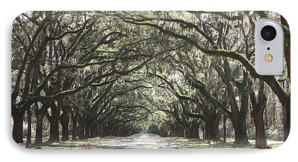 Soft Southern Day Phone Case by Carol Groenen