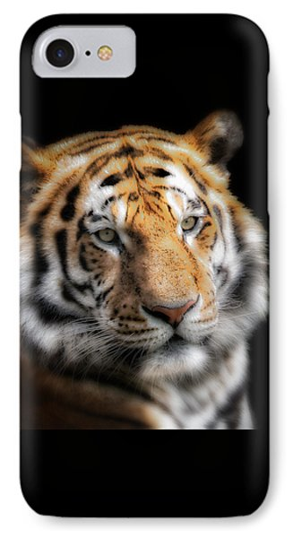 Soft Tiger Portrait IPhone Case by Chris Boulton