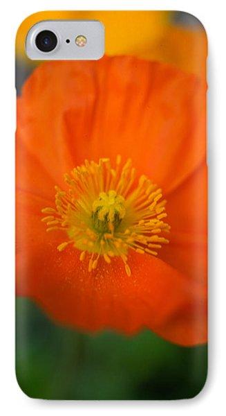 Softly Poppies Phone Case by Kathy Yates