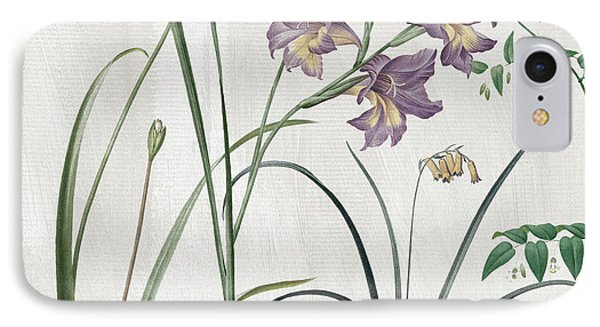 Softly Purple Crocus IPhone Case by Mindy Sommers