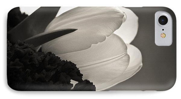 Lit Tulip IPhone Case by Marilyn Hunt