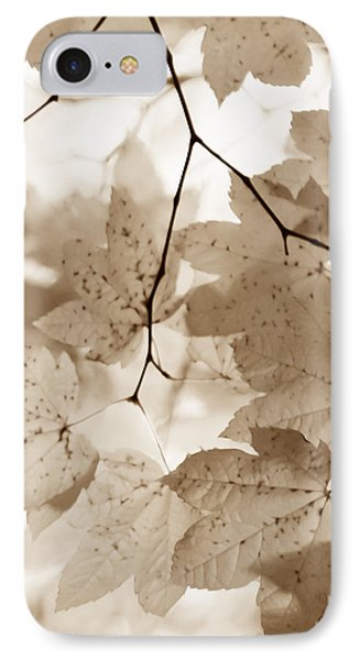Softness Of Brown Maple Leaves Phone Case by Jennie Marie Schell