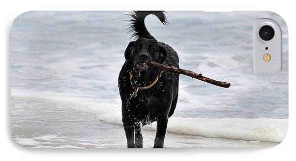 Soggy Stick IPhone Case by Al Powell Photography USA