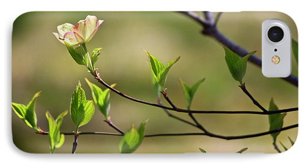 Solitary Dogwood Bloom Phone Case by Teresa Mucha