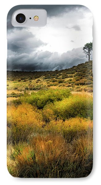 IPhone Case featuring the photograph Solitary Pine by Frank Wilson