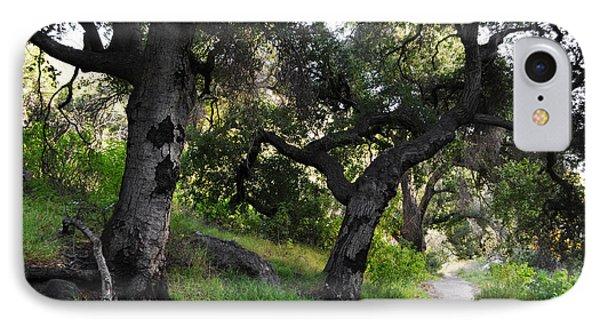 Solstice Canyon Live Oak Trail IPhone Case by Kyle Hanson