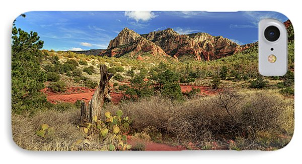 IPhone Case featuring the photograph Some Cactus In Sedona by James Eddy