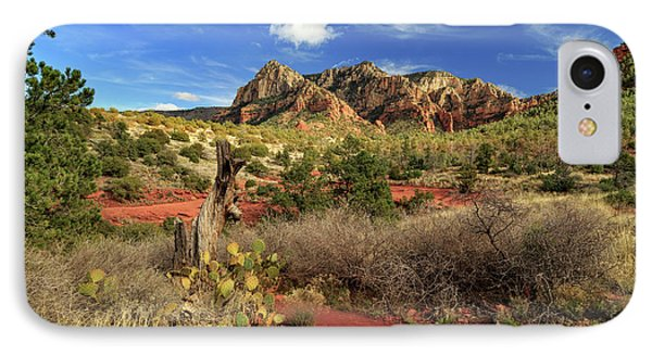 Some Cactus In Sedona IPhone Case by James Eddy