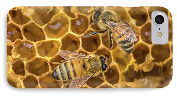 IPhone Case featuring the photograph Some Of Your Beeswax by Bill Pevlor