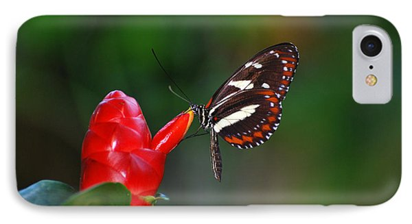 IPhone Case featuring the photograph Something Red by Teresa Blanton