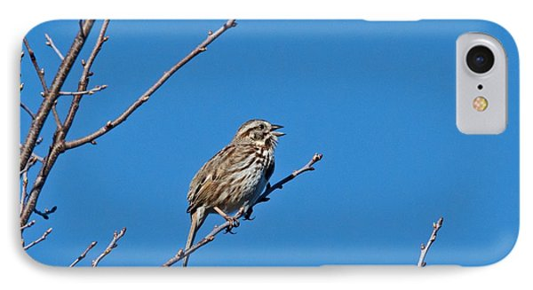 IPhone Case featuring the photograph Song Sparrow by Michael Peychich