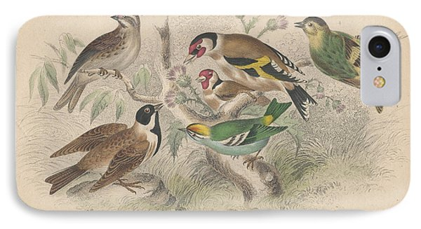 Songbirds IPhone Case by Dreyer Wildlife Print Collections