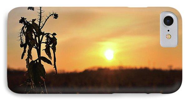 iPhone 7 Case - Sonnenuntergang by Scimitarable
