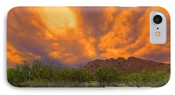 IPhone Case featuring the photograph Sonoran Sonata H16 by Mark Myhaver