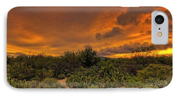 IPhone Case featuring the photograph Sonoran Sunset H4 by Mark Myhaver