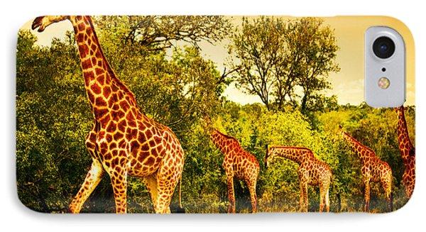 South African Giraffes IPhone Case