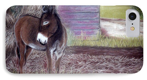 IPhone Case featuring the pastel South Georgia Mule by Jan Amiss